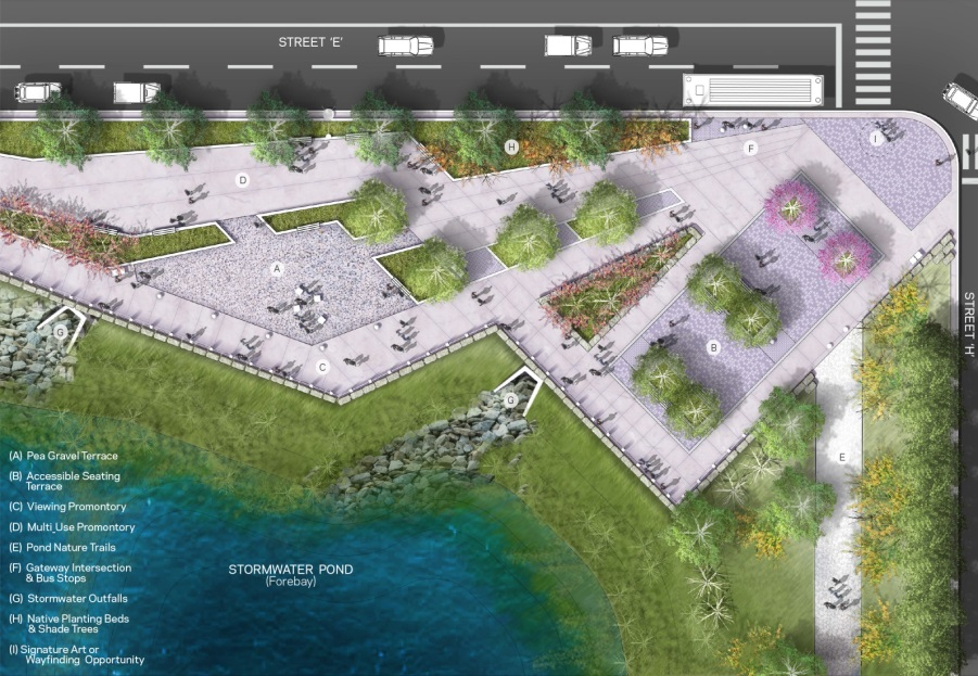The stormwater pond design is a truly hybrid landscape which integrates storm water management infrastructure with public amenity space as well as shoreline and aquatic habitat.